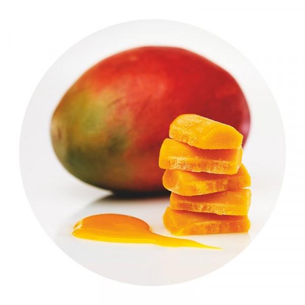 Mangopuré 1x2kg Findus #96008225