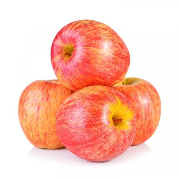 Äpple Gala 1x13kg, Everfresh #27789