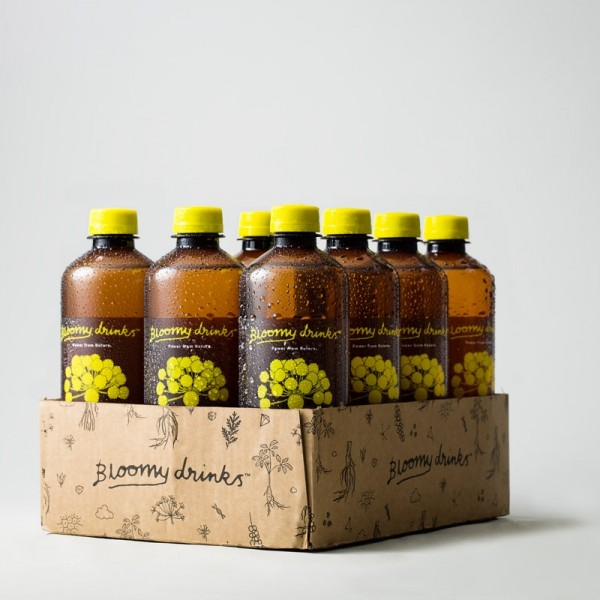 Elderflower & Ginger 12x50cl Bloomy Drinks #113